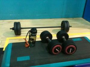 bella weights barbell