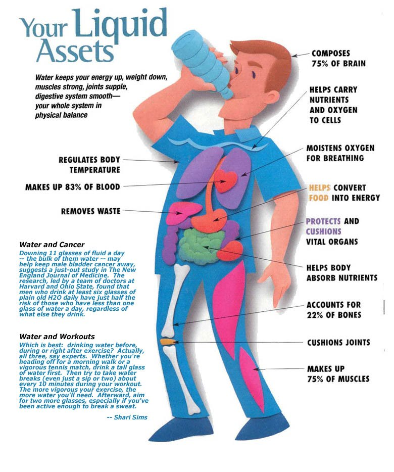 Why Water Is Good For You